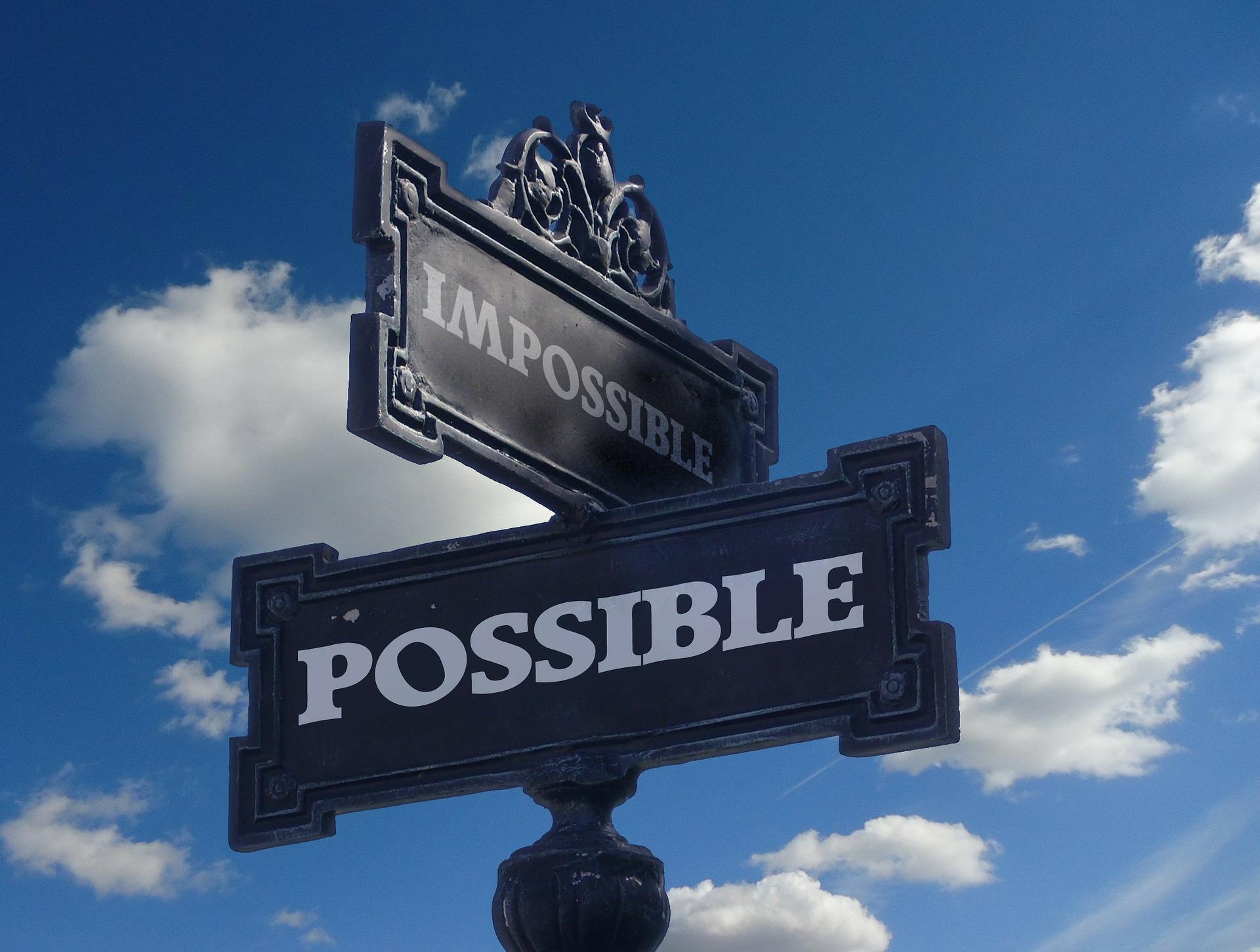 volere l'impossibile